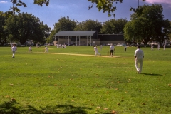 Cricket in Victoria Park