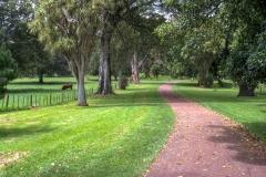 Cornwall Park