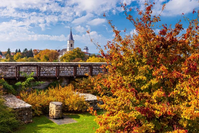 Fire Tower Garden