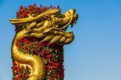 Tian Tan dragon