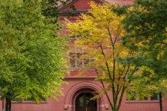 Autumn Colours, Harvard