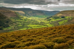 Vale of Ewyas from Hatterrall Hill
