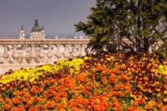 Royal Palace Terrace