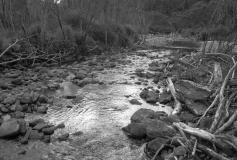 Kauaeranga river
