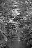Kauaeranga waterfall