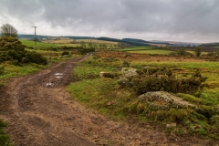 Dartmoor farm track
