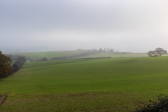Murky day on Cranborne Chase