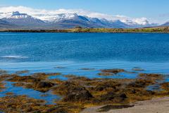 Across the harbour at Breiðdalshreppur, Eastfjords