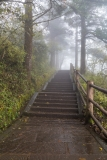 Pilgrim trail
