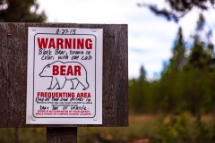 Warning! Bear!