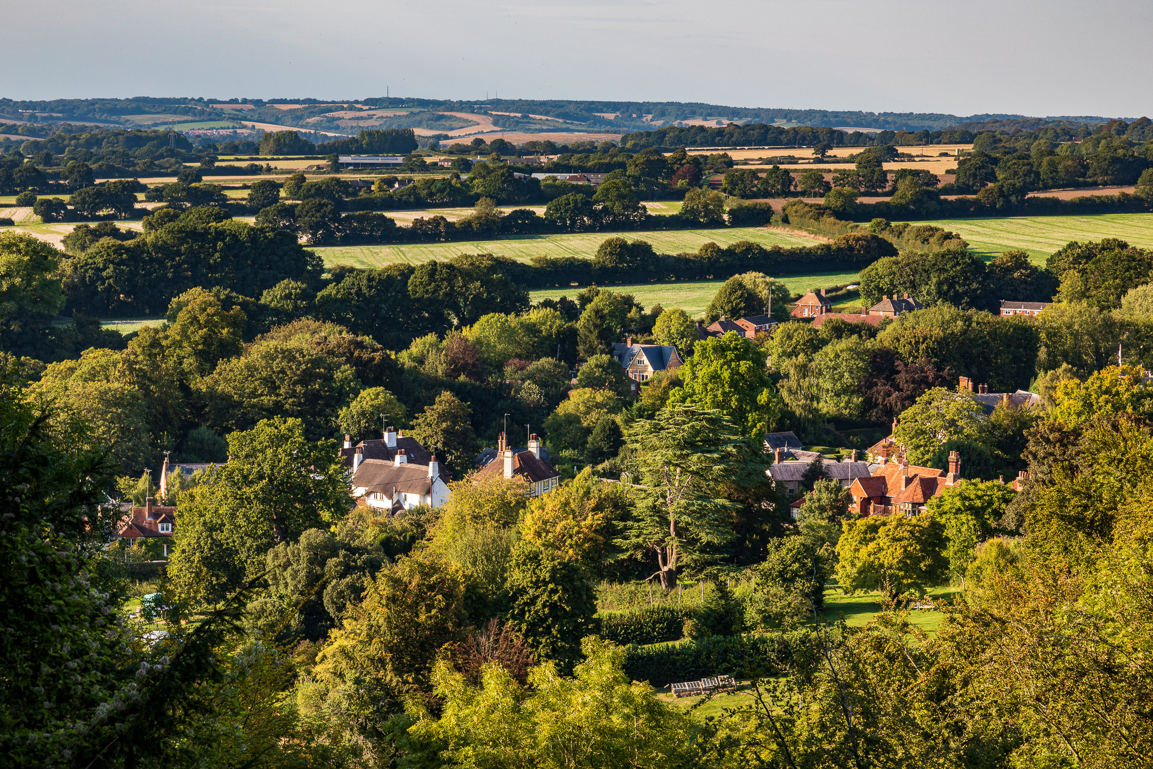 Selborne village from the South Downs