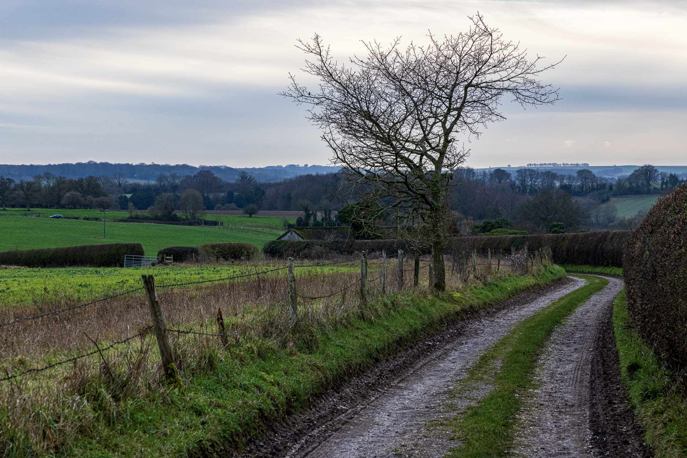 Hampshire byway