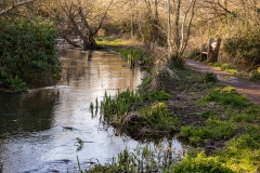 River Itchen, Bishopstoke