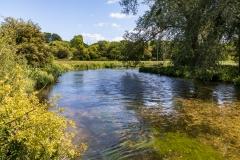 River Test near Horsebridge