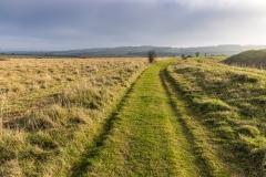 Track alongside Bokerley Ditch