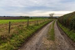 Hampshire farm track
