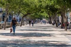 Walking the Prado