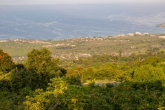 Holualoa view