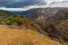 Waimea Canyon from Cliff Trail Lookout