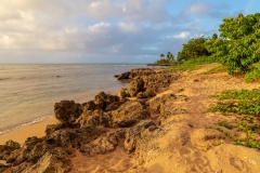 Haleiwa Alii Beach Park