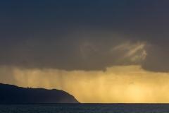 Shark's Cove Sunset
