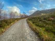 Glen Affric track