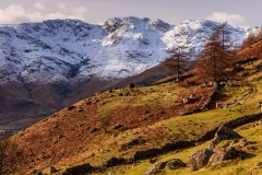 Up Great Langdale
