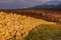 """Golden Hour"" near Castlerigg Stone Circle"