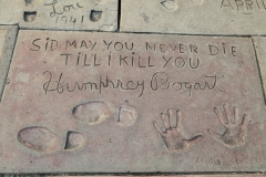 Chinese Theatre message