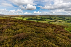 Farndale from Rudland Rigg, North York Moors