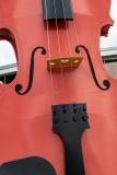 World's largest ceilidh fiddle