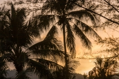 Kamala sunrise