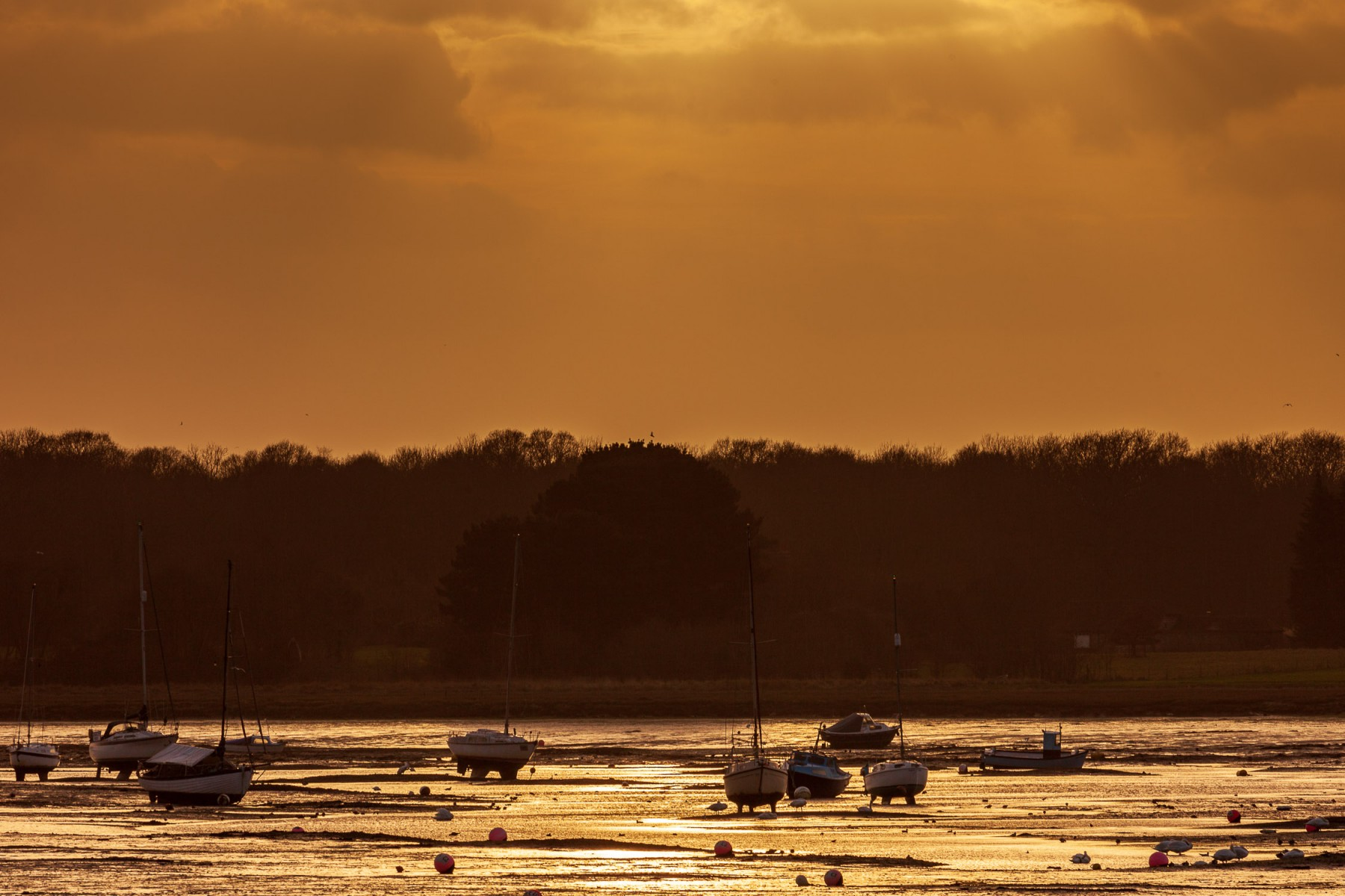 Chichester Harbour boats