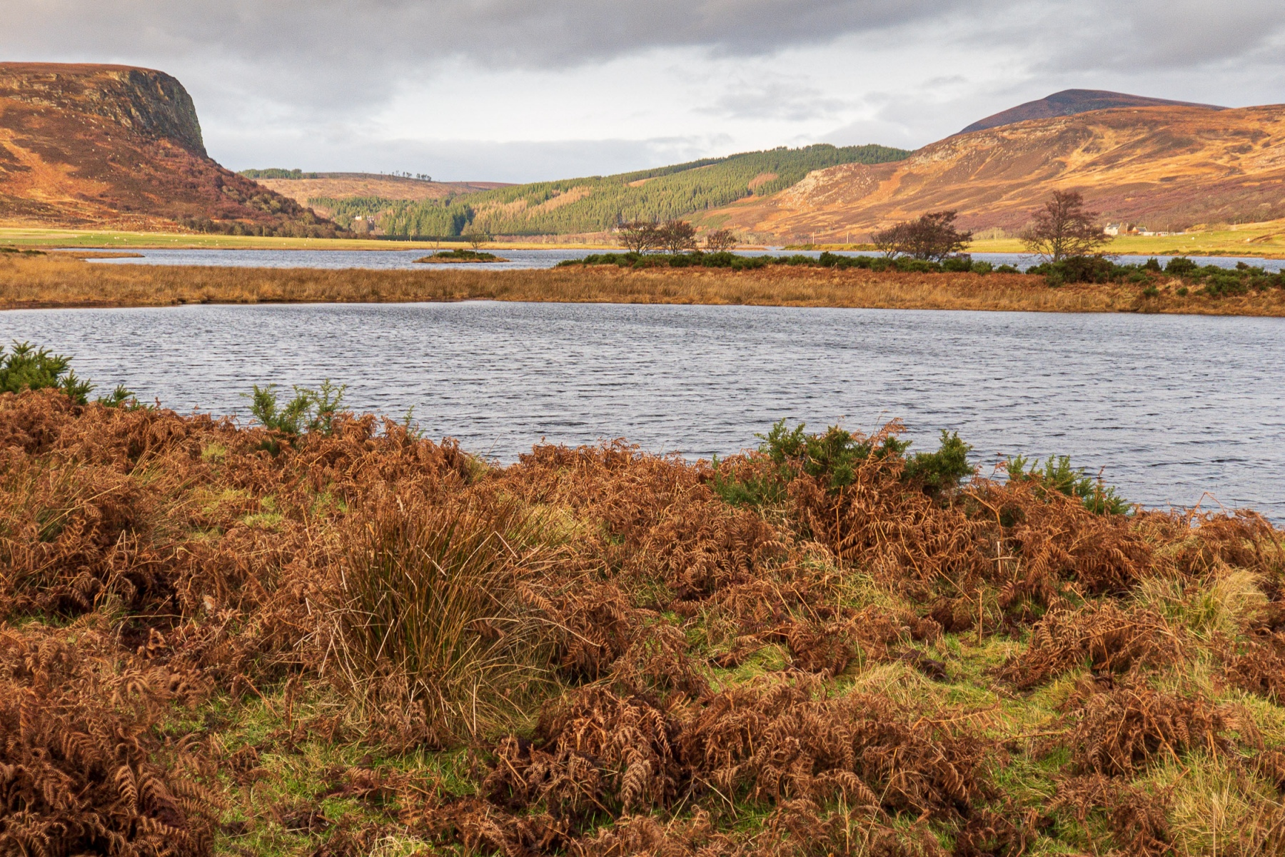 Loch Brora
