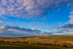 Evening, Cuckmere Valley