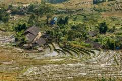 Farm, Hoan Lien Son National Park