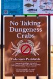 Municipal Pier sign
