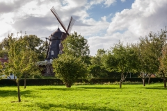 Windmill in Slottsparken
