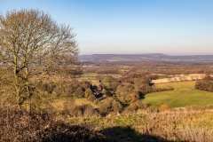 South Downs above East Harting