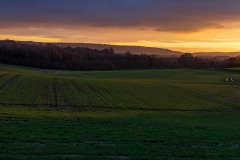 Sunset colours over Sussex farmland