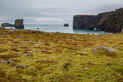 Across moorland to the cliffs at Dyrhólaey, south Iceland