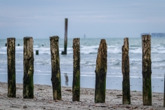 Groyne, West Wittering beach