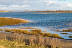 Salt marshes in Chichester Harbour near The Spit, West Wittering