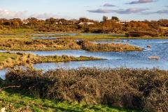 Chichester Harbour salt marshes