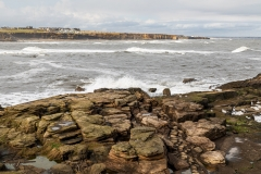 View to Old Hartley from St. Mary's Lighthouse