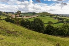 Parrock Hill from Cadbury Castle