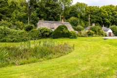 Tollard Royal cottage