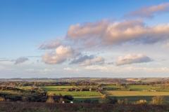 A Wiltshire view