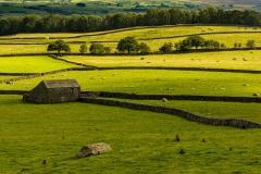 Drystone walls and stone barn, Austwick