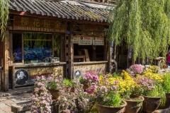Dayan shops